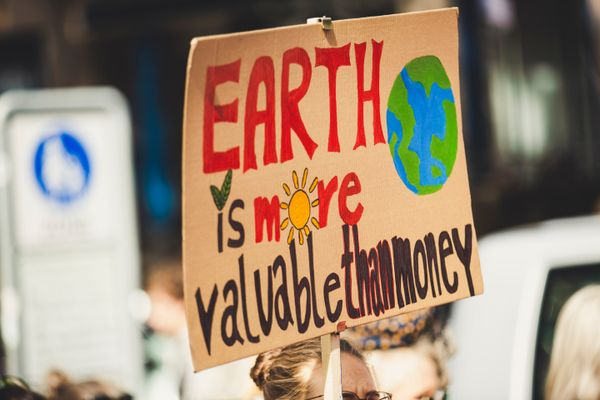 Fridays for Future climate activist arrested in India