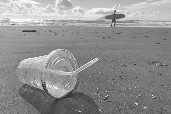 Germany and Netherlands to ban disposable plastic in 2021