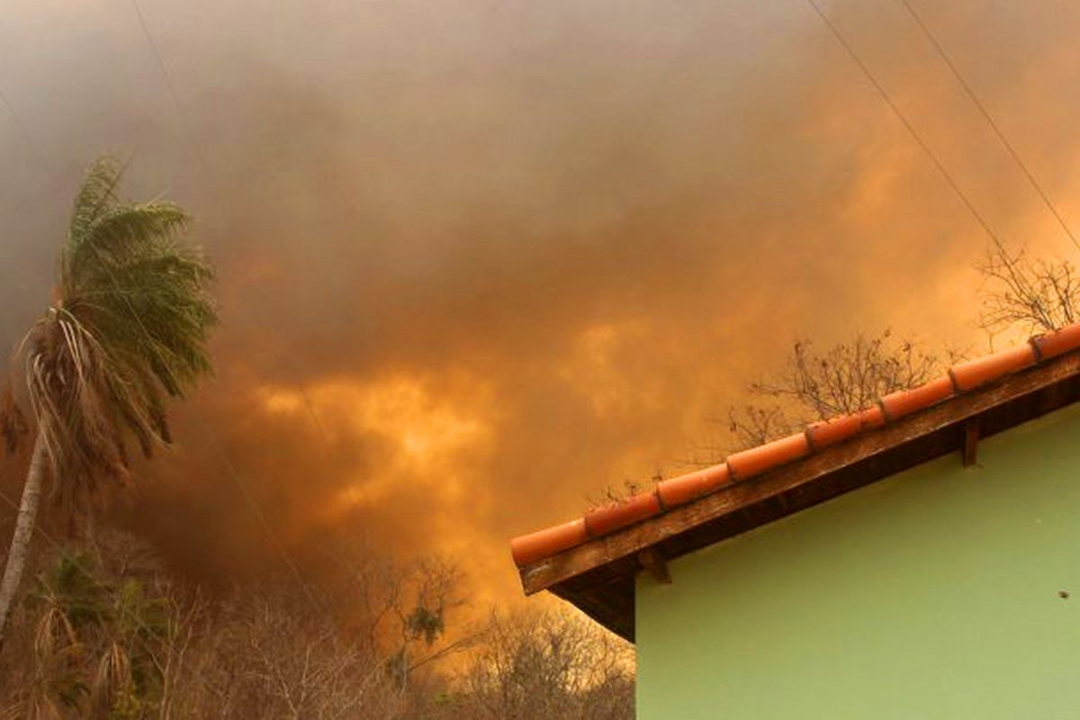 Brazil and record fires: Bolsonaro government withdraws firefighters