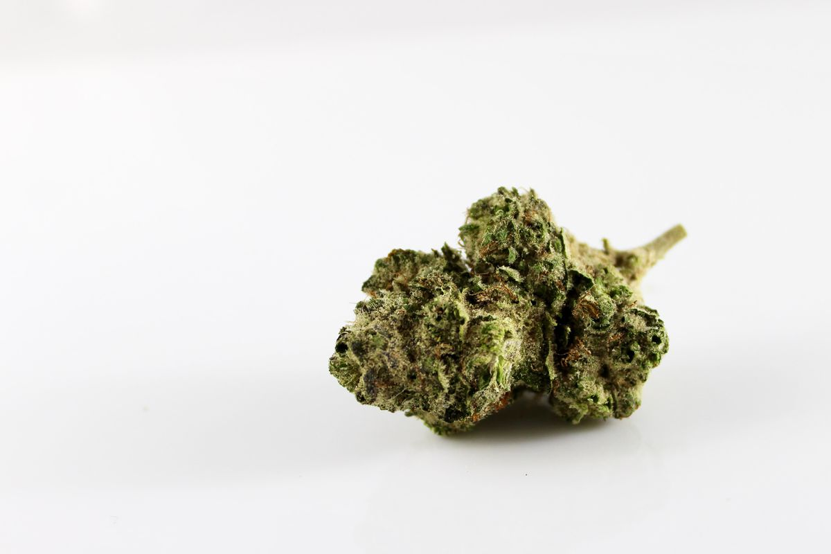 Modified cannabis could potentially kill cancer cells according to research at University of Newcastle