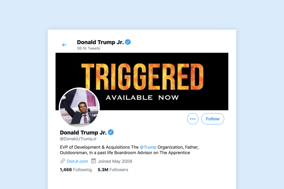Twitter temporarily suspends Donald Trump Jr's account