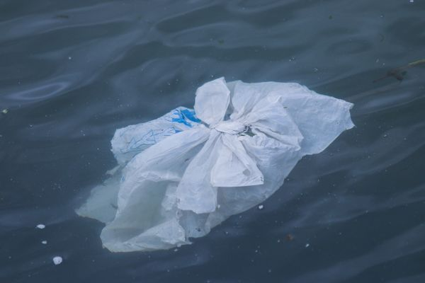 Japan implements mandatory fee for plastic bags