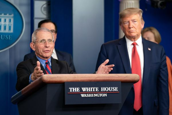 Dr Anthony S. Fauci in the Press Briefing Room of the White House, March 2020