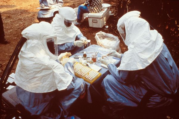 This 1995 photograph shows scientist with personal protective equipment (PPE) testing samples from animals collected in Zaire for the Ebola virus.