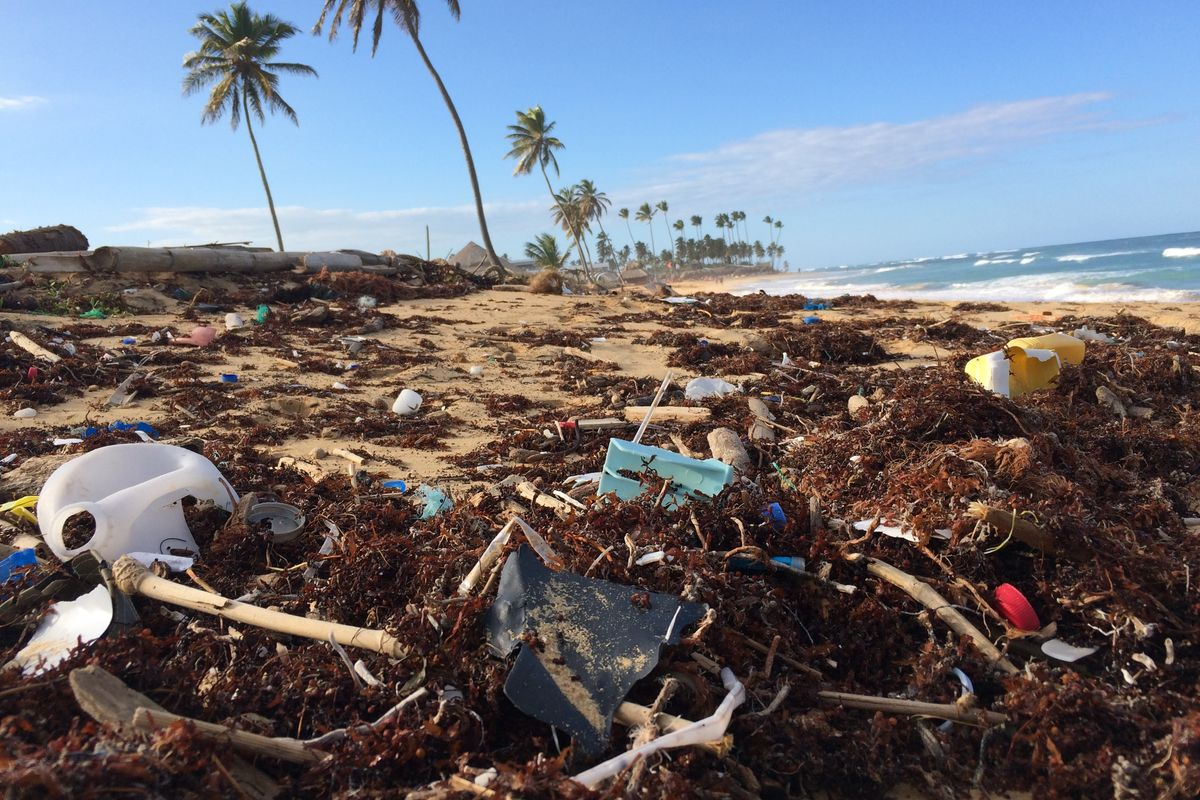 Coca-Cola, Pepsi and Nestlé have been named top plastic polluters for 3rd year in a row