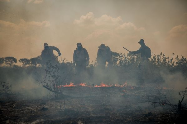 Brazilian Pantanal reports 8,106 fires in September; 2020 already has the largest number of fire outbreaks in history