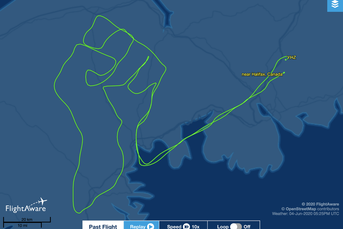 Canadian pilot 'drew' raised BLM fist in the sky in dedication to George Floyd