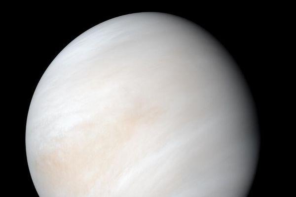 Scientists detect phosphine in Venus' atmosphere - a possible sign for life