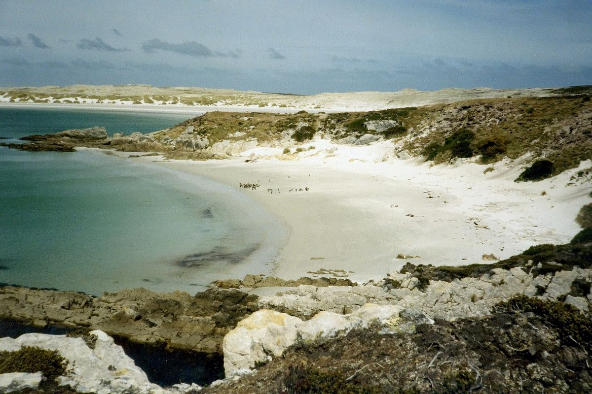 After nearly 40 years Falkland Islands celebrate being landmine free