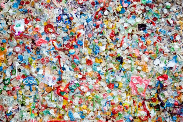 Scientists have developed a new technique to detect microplastic in human organs