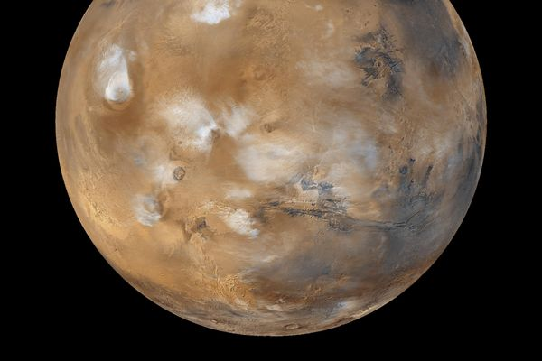 Researchers: Cyanobacteria could thrive under Martian conditions