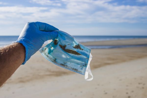 1.56b single-use face masks estimated to have entered oceans in 2020