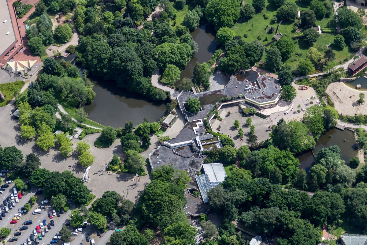 Pensioner fulfils old promise by donating €750,000 to German zoo