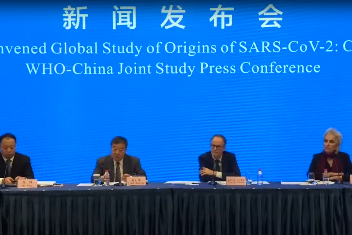 WHO team in Wuhan says 'extremely unlikely' virus leaked from a lab in China