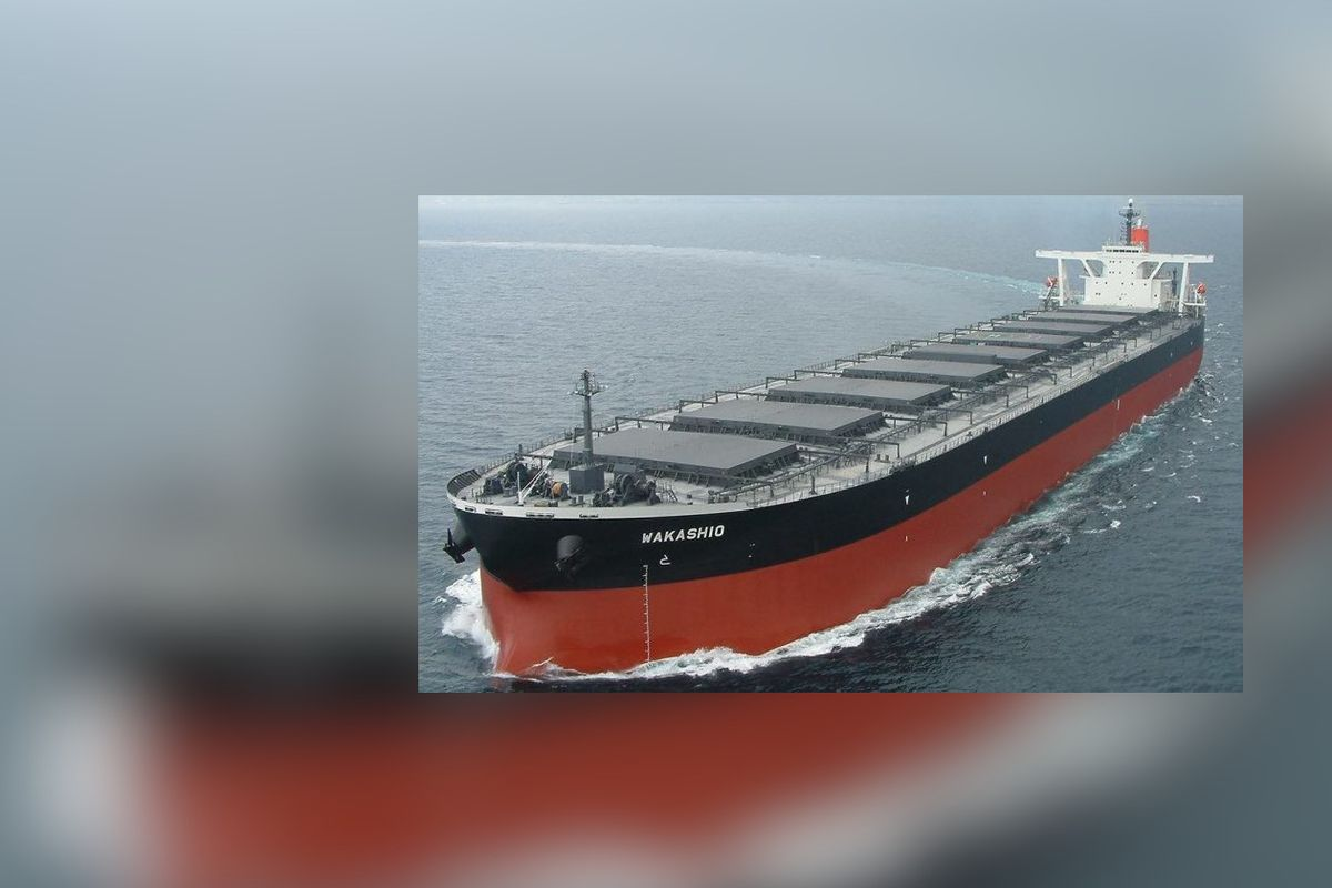 Mauritius arrests captain of Japanese ship over oil spill